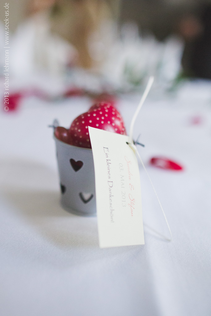 Hochzeit_Lichtenwalde_04